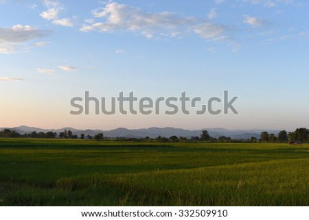 a beautiful  scenery of evening  landscapes of Chiang rai, Thailand