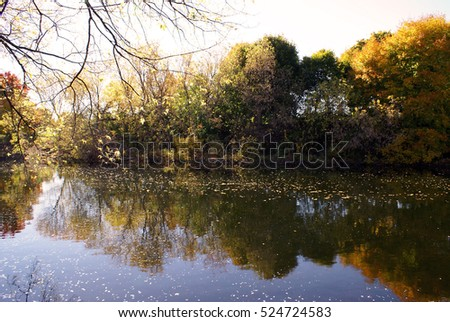 A beautiful scenic of a river in the autumn color change.