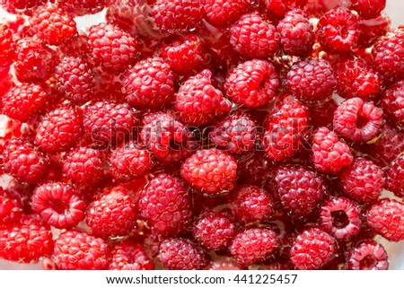 A beautiful selection of freshly picked ripe red raspberries