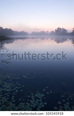 A beautiful sunrise with fog - stock photo