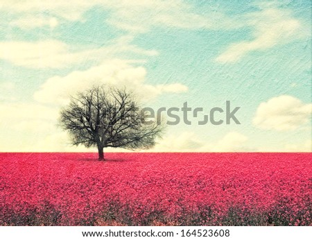 a beautiful tree in a red field - stock photo