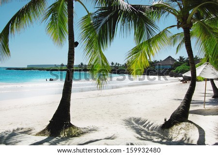 A beautiful tropical beach - stock photo