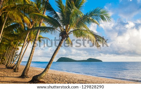 A beautiful tropical beach with palm trees at sunrise in northern Australia - stock photo
