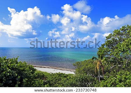 A beautiful tropical scene with white sand beach, puffy white clouds and green foliage. - stock photo
