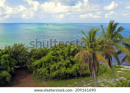 A beautiful tropical setting with palm trees, puffy clouds and the inviting blue-green water of the sea. - stock photo