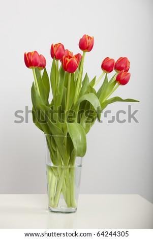 A beautiful vase of orange tulips isolated on white - stock photo