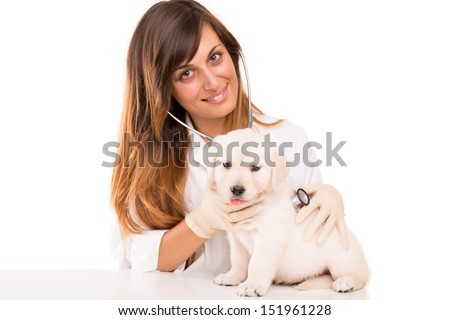 A beautiful veterinarian with a golden retriever puppy