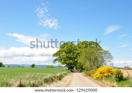 A beautiful view of a back road and barley farm with beautiful clouds in spring time, Scotland