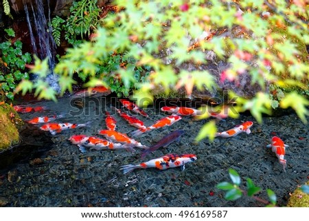 Merrily Stock Images Royalty Free Images Vectors