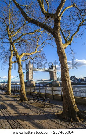 A beautiful view of Tower Bridge through the trees along the Thames Path in London. - stock photo