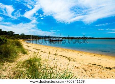 A beautiful walk in July along Studland beach, Shell bay and Studland heath in Dorset south west England.