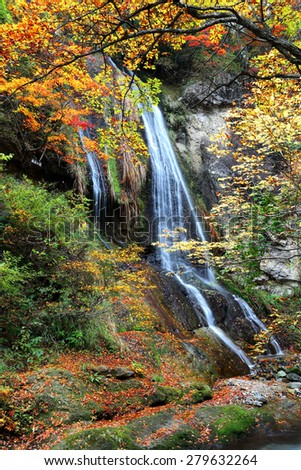 A beautiful waterfall in the forest of colorful foliage ~ Autumn scenery of Japan ( Long Exposure Effect ) - stock photo