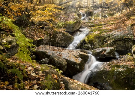 A beautiful winding cascade in West Virginia  during autumn colors with sunbeams coming through the trees. This beautiful tranquil scene looks it's best with peak autumn colors in the trees.  - stock photo