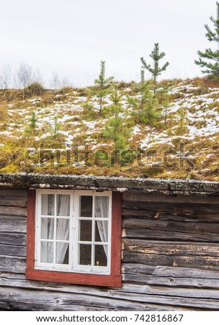 A Beautiful Wooden House In The Forest With A Grass And Moss Growing On A  Roof
