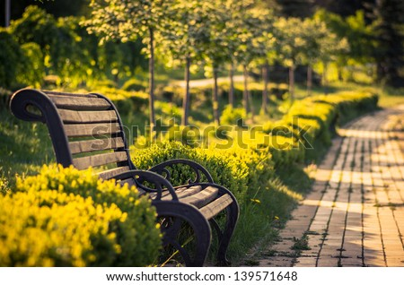 A bench in the alley in the park on a sunny day with a blurred background - stock photo