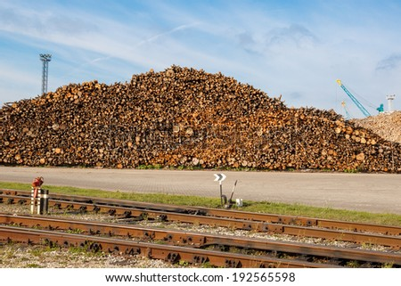 A big pile of wooden logs stacked for exportation - stock photo