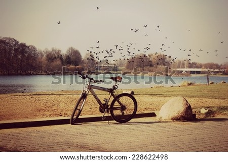 a Bike, Cycling background, Be free, Freedom background, Birds flying, Birds spring, Summer time - stock photo