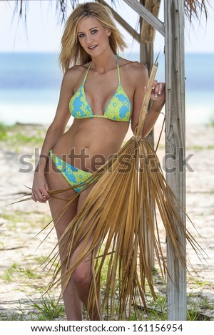 A bikini model posing in an outdoor environment  - stock photo