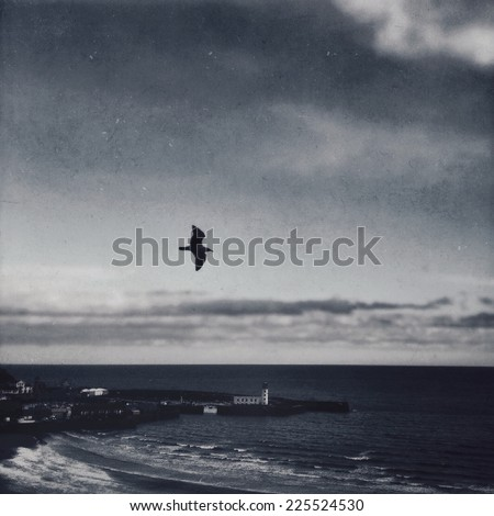 A bird flying over a lighthouse and an ocean. - stock photo
