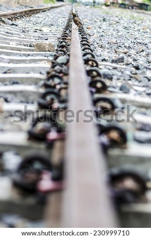 A bird is on the trian rail - stock photo