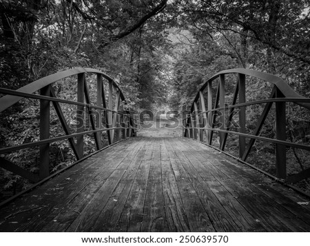 A black and white image of a wooden bridge on a nature trail - stock photo