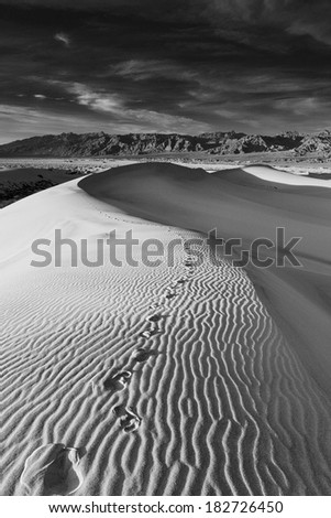 A black and white image showing the footprints of  traveler left on remote desert sand dunes - stock photo
