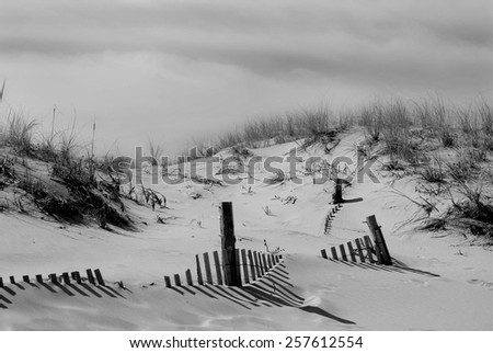 A black and white landscape photograph of mostly buried weathered beach fencing alone the grassy sand dunes in Rehoboth Beach Delaware. - stock photo