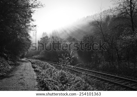 A black and white landscape photograph of train tracks in a German river valley, as sunshine bursts through the tops of the timber.