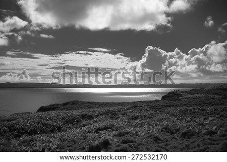 A black and white tropical ocean landscape. - stock photo