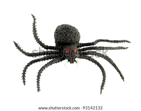 A black spider isolate on white background - stock photo