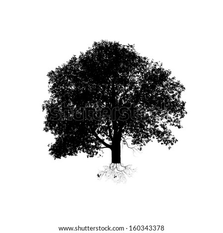 a black tree silhouette on white background