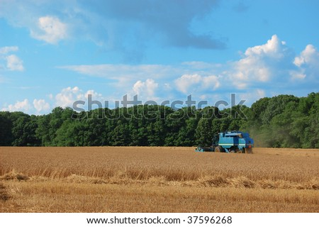 A blue combine working in a field - stock photo