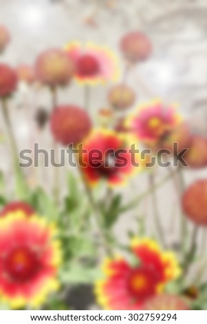 A blured fresh background displays flowers at summer day - stock photo