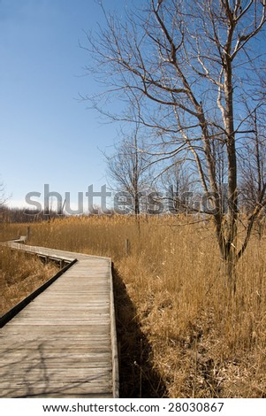 A boardwalk path through a wetlands area in early spring.