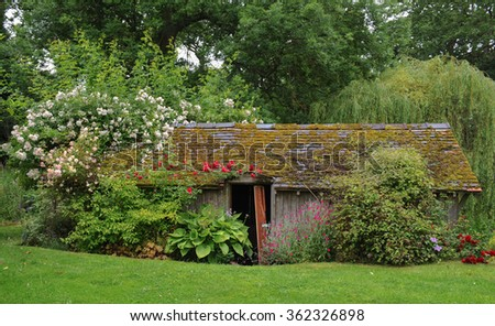 A Boat House on the River Sow Next to a Weeping Willow Tree (Salix babylonica) and Covered in Rambling Roses (Rosa) near the Rural Village of Milford in Staffordshire, England, UK