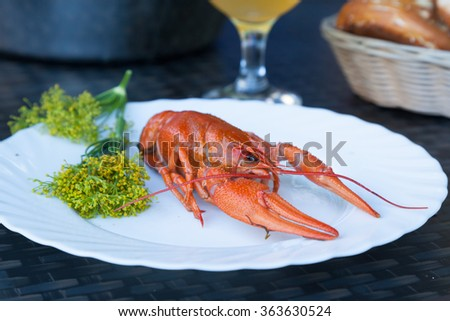 A boiled crayfish served on a white plate decorated with dill flowers - stock photo