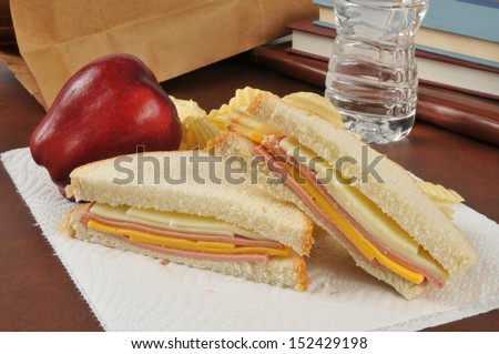 A bologna and cheese sandwich sack lunch with an apple, potato chips and bottled water - stock photo