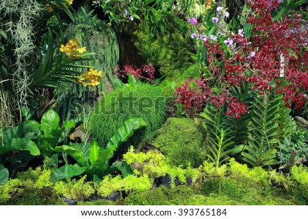 A botanical garden with orchids  - stock photo