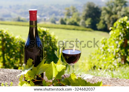 a bottle and a glass of red wine,  on vineyard  background
