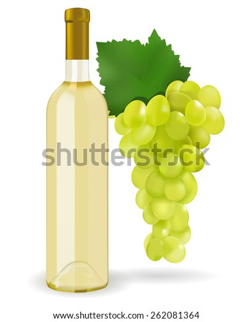 A bottle of white wine and grapes isolated on white background. Raster version
