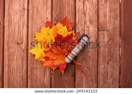 a bouquet of autumn leaves on wooden background