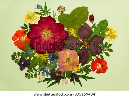 A bouquet of flowers on a light background. Pressed, dried rosehip flowers, clematis, geraniums, violets, dandelion, clover and lupine. Picture from dry flowers. - stock photo