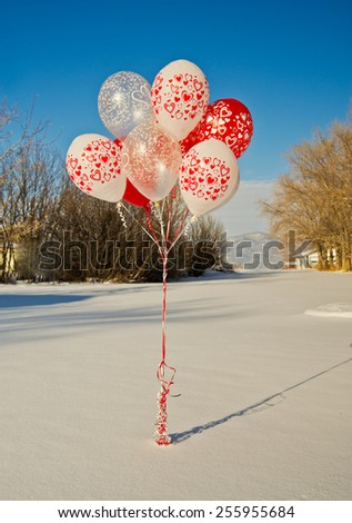 A bouquet of red and white balloons printed with hearts and other romantic symbols sits tethered on a snow-covered lawn