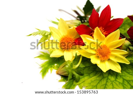 A bouquet of red and yellow flowers. Photo.