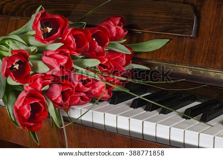 A bouquet of red tulips  lying on the piano keys