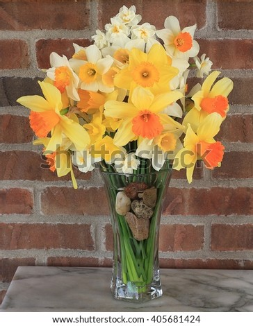 A Bouquet of Spring Daffodils in a Vase - stock photo