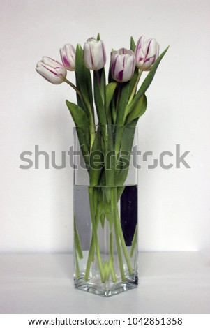 A bouquet of tulips in a vase. Fresh spring flowers at home.
