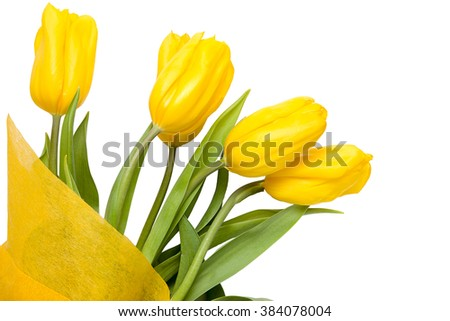 A bouquet of yellow tulips isolated on white background
