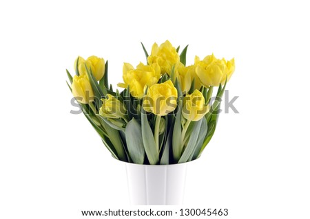 A bouquet of yellow tulips on a white background