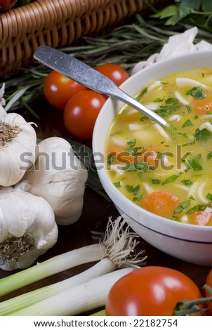 A bowl of fresh chicken noodle soup - stock photo